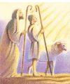 Shepherding Team